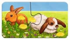 Liebenswerte Tiere - Bild 6 - Klicken zum Vergößern