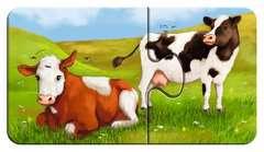 Liebenswerte Tiere - Bild 8 - Klicken zum Vergößern