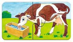 Auf dem Bauernhof - Bild 7 - Klicken zum Vergößern