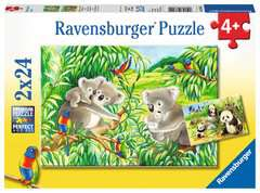 Sweet Koalas and Pandas - image 1 - Click to Zoom