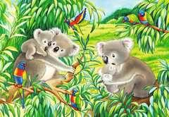 Sweet Koalas and Pandas - image 2 - Click to Zoom