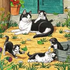 Süße Katzen und Hunde - Bild 3 - Klicken zum Vergößern