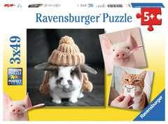 Funny Animal Portraits - image 1 - Click to Zoom