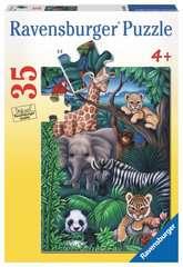 Animal Kingdom - image 1 - Click to Zoom