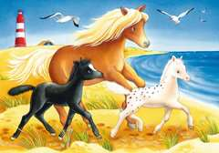 Cute Horses - image 2 - Click to Zoom