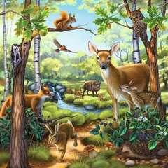 Wald-/Zoo-/Haustiere - Bild 3 - Klicken zum Vergößern