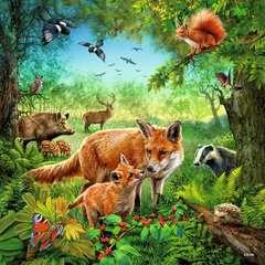 Tiere der Erde - Bild 2 - Klicken zum Vergößern
