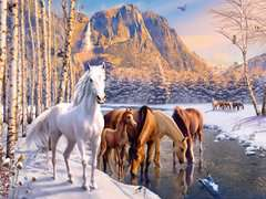 Winter Horses - image 2 - Click to Zoom