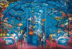 Exposition aquatique - Image 2 - Cliquer pour agrandir