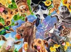 Funny farmyard friends - bilde 2 - Klikk for å zoome