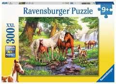 Wildpferde am Fluss - Bild 1 - Klicken zum Vergößern