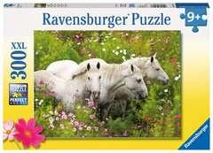 Pferde auf der Blumenwiese - Bild 1 - Klicken zum Vergößern