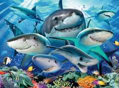 Smiling Sharks - image 3 - Click to Zoom