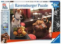 The Secret LIfe of Pets - image 1 - Click to Zoom