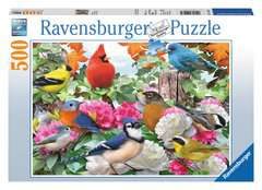 Garden Birds - image 1 - Click to Zoom
