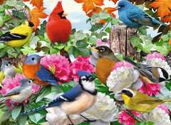 Garden Birds - image 2 - Click to Zoom