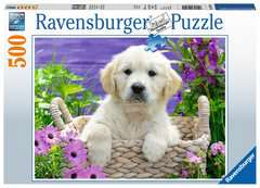 Sweet Golden Retriever, 500pc - Billede 1 - Klik for at zoome