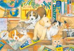 Pets on Tour - image 2 - Click to Zoom