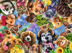 Animal Selfies, 500pc - Billede 2 - Klik for at zoome