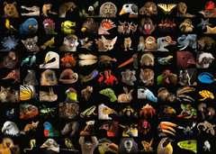 99 atemberaubende Tiere - Bild 2 - Klicken zum Vergößern