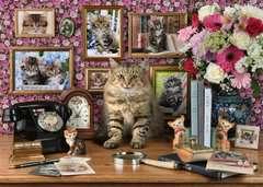 Meine Kätzchen - Bild 2 - Klicken zum Vergößern