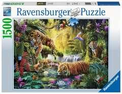 Puzzle 1500 p - Tigres au plan d'eau - Image 1 - Cliquer pour agrandir