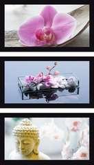 TRYPTYK ORCHIDEA 3X500 EL - Zdjęcie 3 - Kliknij aby przybliżyć