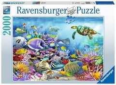 Lebendige Unterwasserwelt - Bild 1 - Klicken zum Vergößern