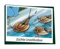Woozle Goozle - Eine Reise durch die Urzeit Experimentieren;Woozle Goozle - Bild 5 - Ravensburger