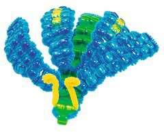 3D-Perlentiere - Bild 7 - Klicken zum Vergößern
