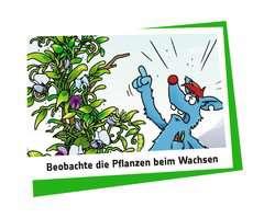 Woozle Goozle - Schlingpflanzen - Bild 4 - Klicken zum Vergößern