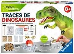 Traces de dinosaures - Image 1 - Cliquer pour agrandir