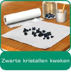 ScienceX® - Kristallen kweken en edelstenen - image 11 - Click to Zoom