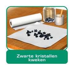 ScienceX® - Kristallen kweken en edelstenen - image 12 - Click to Zoom