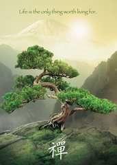 Zen Baum - Bild 2 - Klicken zum Vergößern