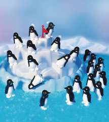 Penguin Pile Up - image 7 - Click to Zoom