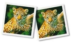 Tierbaby memory® - Bild 3 - Klicken zum Vergößern