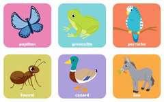 Loto Animaux familiers - Image 4 - Cliquer pour agrandir