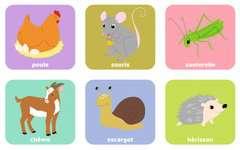 Loto Animaux familiers - Image 5 - Cliquer pour agrandir