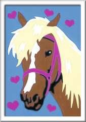 Liebes Pferd - Bild 2 - Klicken zum Vergößern