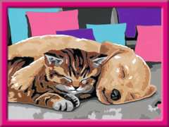 Slapende vrienden - image 2 - Click to Zoom