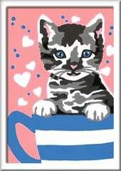 Kleines Kätzchen - Bild 2 - Klicken zum Vergößern