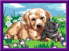 Hund und Katze - Bild 2 - Klicken zum Vergößern