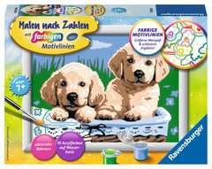 Süße Hundewelpen - Bild 1 - Klicken zum Vergößern