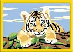 Kleiner Tiger - Bild 2 - Klicken zum Vergößern