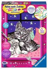Schlafende Katzen - Bild 1 - Klicken zum Vergößern