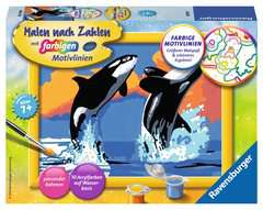 Verspielte Orcas - Bild 1 - Klicken zum Vergößern