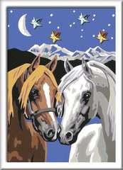 Pferdeliebe - Bild 2 - Klicken zum Vergößern