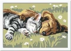 Douce sieste Loisirs créatifs;Peinture - Numéro d'Art - Image 2 - Ravensburger