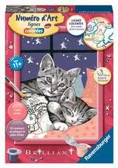 Numéro d'art - petit - Chatons enlacés sous une nuit étoilée - Image 1 - Cliquer pour agrandir